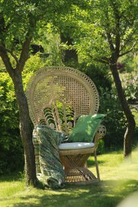 pauwstoel troonzetel peacock chair